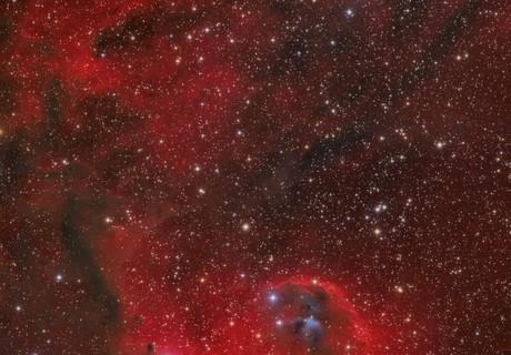 Cederblad 51 reflection nebula in Orion,                                Barry Wilson