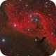Cederblad 51 reflection nebula in Orion,                                Barry Wilson