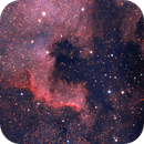 NGC 7000,                                Jingyu Qian