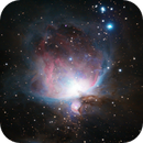 Orion Nebula,                                Cfreerksen
