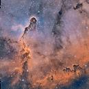 Elephant Trunk Nebula,                                sydney