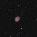 M1 - The Crab Nebula,                                Henrique Silva