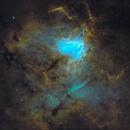 Sh2-206 • NGC 1491 • Fossil Footprint Nebula in SHO,                                Douglas J Struble