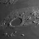 Moon Plato,                                mariachiara spaccini