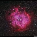 Rosette Nebula,                                Roger Groom