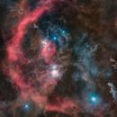 Orion Starless,                                Philippe BERNHARD