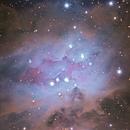 Running Man Nebula,                                Gene