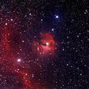 Seagull Nebula,                                David Holko