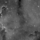 IC 1396 Elephant trunk,                                Lorenzo Massimi