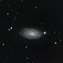 m63 Sunflower galaxy,                                jon nicholls