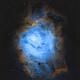 M8 Lagoon - Hubble Palette,                                Rhett Herring