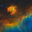 Rainbow Seagull IC2177,                                hewenjing
