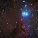 IC 348 LRGB,                                YIJIA ZHANG