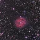 Nebulosa cocoon ic5146,                                José María Hernández Ríos