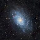 Triangulum Galaxy, M33 (2020),                                Kurt Zeppetello