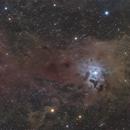 The Iris Nebula,                                Damien Cannane