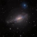 NGC 3521 CDK17 version,                                Alex Woronow