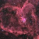 Heart Nebula,                                Chad Quandt