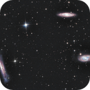 Leo Triplet - M66 Gruppe, M 65, M 66, NGC 3628,                                Jochem Maas