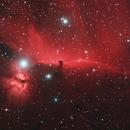 Horsehead Nebula,                                Adrie Suijkerbuijk