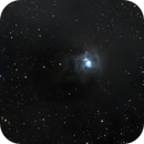 NGC 7023,                                Steve Dean