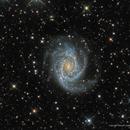 Parent of Many Dwarfs: NGC 2997,                                Russ Carpenter
