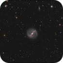 NGC 4314,                                sky-watcher (johny)