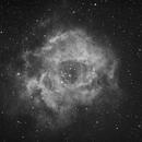 Rosettennebel NGC 2246,                                alphaastro (Rüdiger)