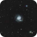 Supernovae in galaxy M61,                                Rabbit Zhang