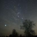 Orion  stars observing,                                Vital