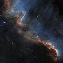 The Cygnus Wall,                                James Schrader