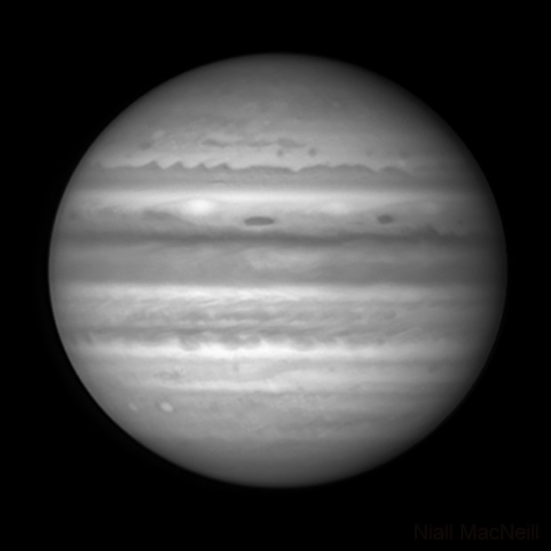 Jupiter - a very close up view with high resolution,                                Niall MacNeill