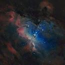 Eagle nebula,                                Martin Williams