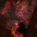 NGC 7000,                                Vincenzo Iodice