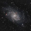 Galaxy M33 in Triangulum,                                JimD