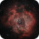 NGC 2237,                                Evan Iguess