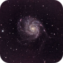 QHY10 First Light - M101,                                Andy Booth