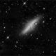M82,                                Steve Foulkes