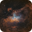 M16 HOO Bi-color,                                Nick Axaris