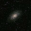 Triangulum galaxy (M33),                                Christian Côté