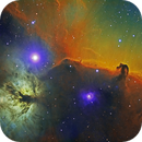 Horsehead and Flame nebula in HST palette,                                Gordon Haynes