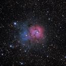 M20 - Trifid Nebula,                                Marcelo Alves