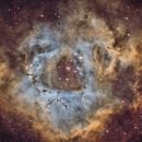 NGC2237 SHO,                                Jesus Magdalena