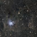NGC 7023,                                Andy Ermolli