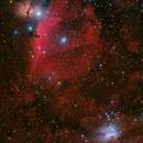 Orion Nebular Complex,                                Giuseppe Donatiello