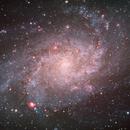 M33 - Triangulum Galaxy,                                David Quiles