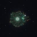 Cat's Eye Nebula,                                Jeffrey Horne