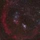 M42 Orion Nebula Horsehead Barnard's Loop,                                ctron