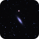 NGC 6503 - Lost in Space,                                Randy Roy