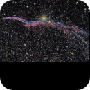 NGC 6960 - The Witches Broom,                                Randy Roy